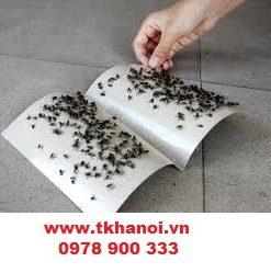 keo dính chuột giá rẻ, nguyên liệu sản xuất